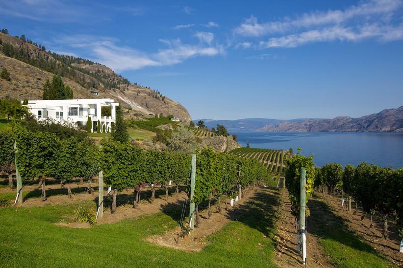 Oak Estate Winery Wedding
