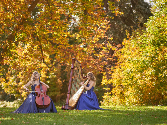 The 10 Best Harp Songs for Your Wedding Ceremony