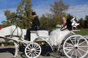 Maria's Magical Carriage Rides