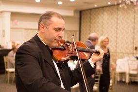 Wanes Violin