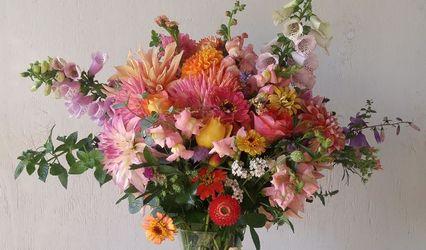 Alchemy Farm Flowers