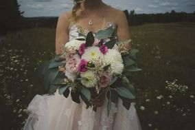 Willow & Fern Photography