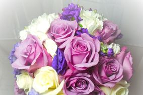 Petitpaw Designs Florist