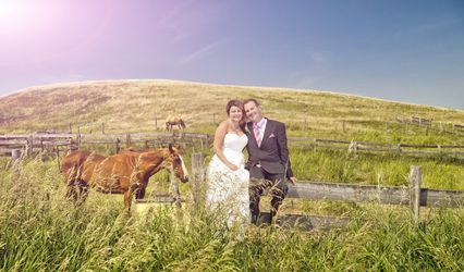 Lucid Weddings 1