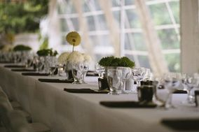 inBloom Events + Design