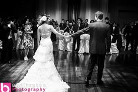 Bedlington Photography