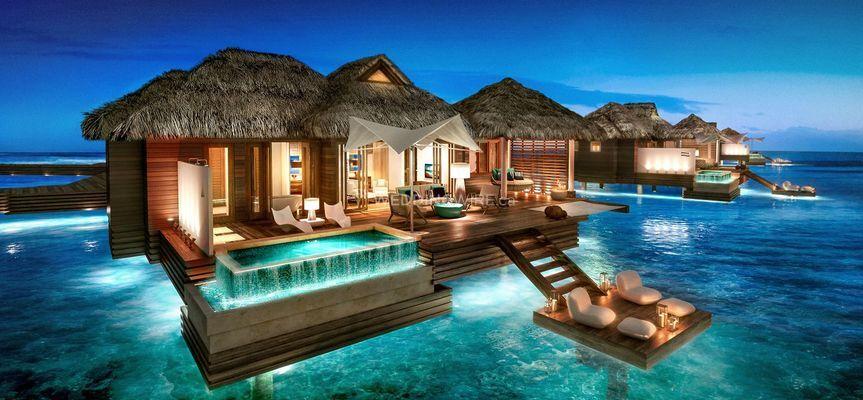 VIP Honeymoons