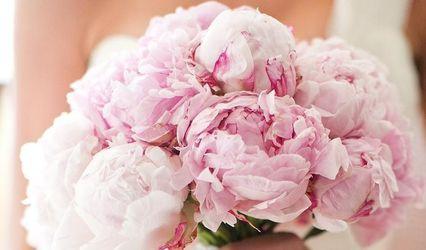 Paris Floral Designs 1