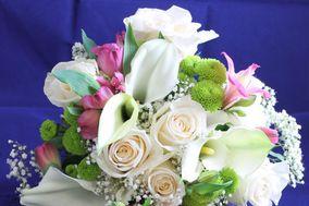 Frans' Flowers