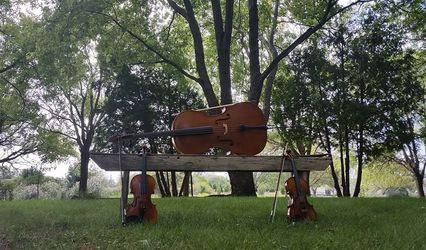 Elevation String Ensemble