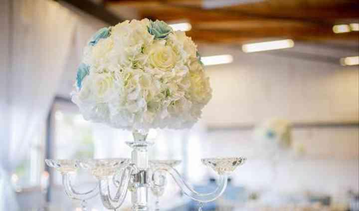Spotlight Events Wedding Planning & Event Design