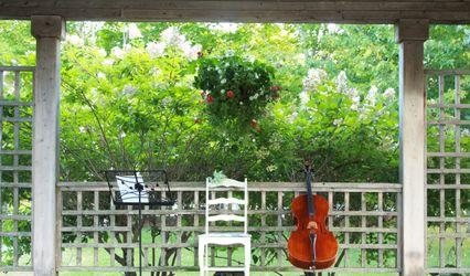 The Halifax Wedding Cellist