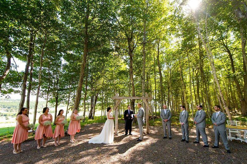 Clinton hills wedding