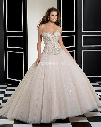 Wedding Gown Cleaning And Preservation Cost: Petrov Bridal