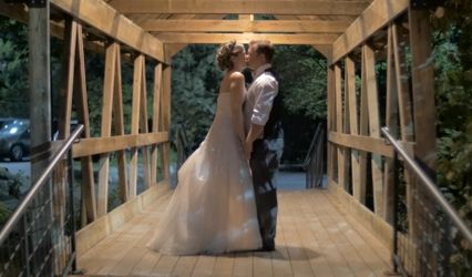 Birch Tree Weddings 1
