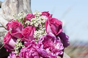 A Bride & Groom's Pictures & Blooms