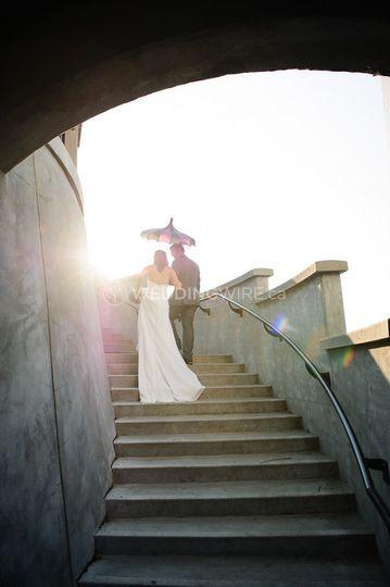 Marla Jenkins Photography