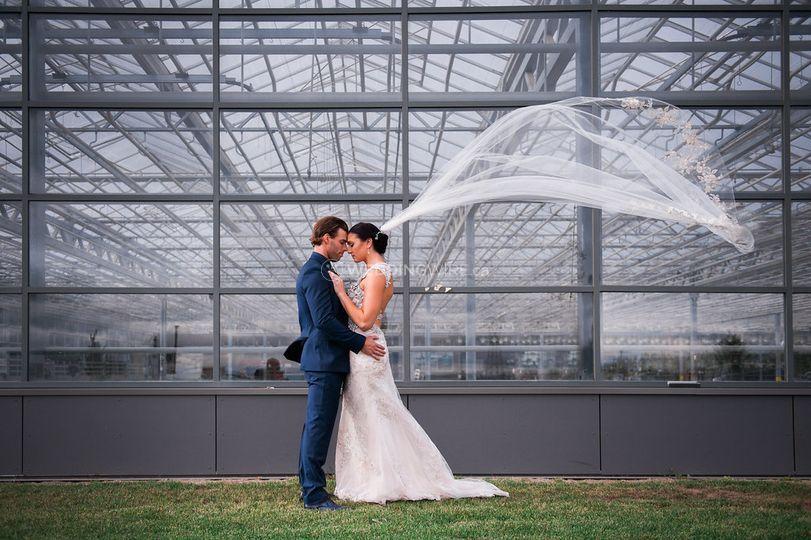 Greenhouse Exterior