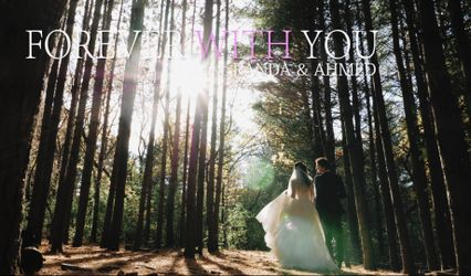 Timeless Tree Weddings 1