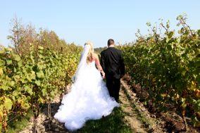 Coopers Hawk Vineyards