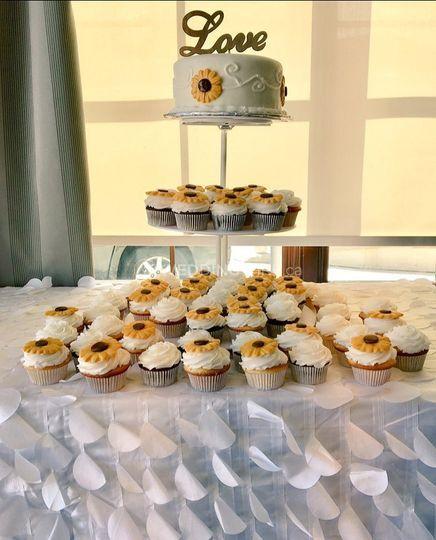 Cake & Cupcake Combination