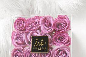 Lush Rose Bar