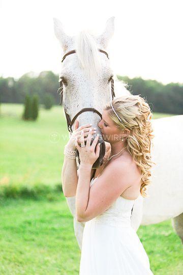 Equestrian weddings Toronto
