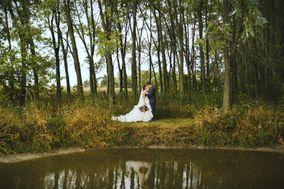 Two Bird Weddings