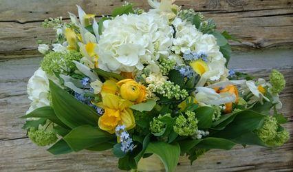 Franktown House Flowers