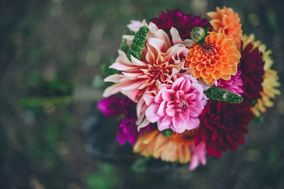 Mel-City Florists