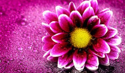 Flower Affairs