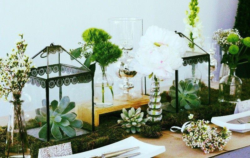 Fresh Look Design Event Wedding Specialist Kitchener On