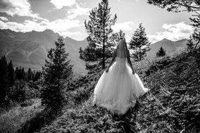 Geoff Wilkings Photography