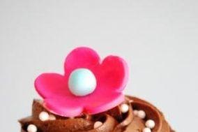 Pretty Little Cupcakes