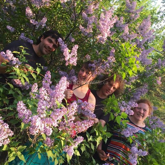 Fagroongala and lilacs