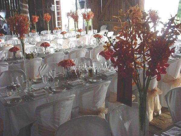 Table Settings.jpg