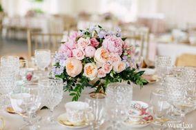 d&d floral designs