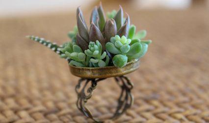 Floralina - Art Floral