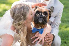 Shawna Rae Wedding Photography