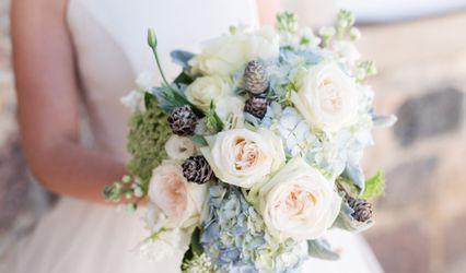 Cerise Floral Studio 1