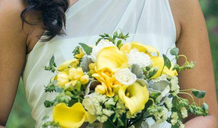 Zenia Floral Designs