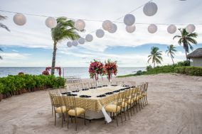 Coral Tide Destination Weddings & Travel