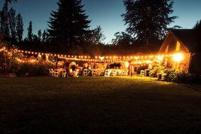 Festilight Weddings + Events