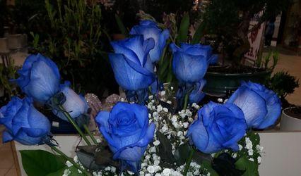 Blue Rose Flowers 1