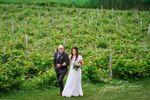 Vineyard near chapelle
