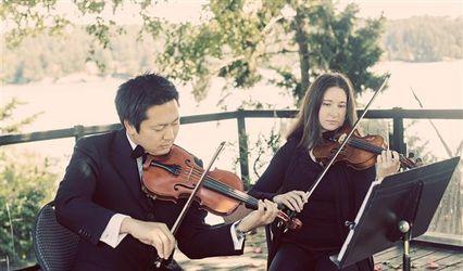 Harbour Strings