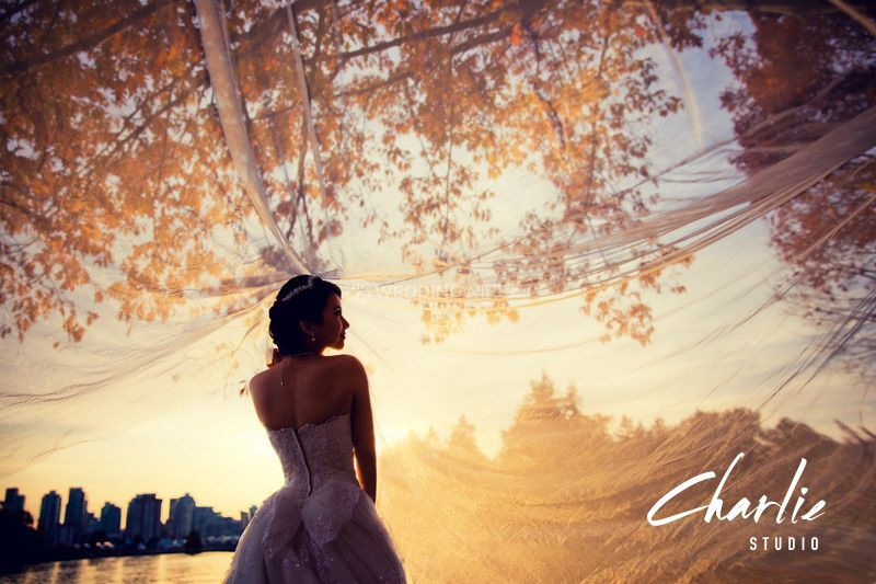Silhouette of autumn
