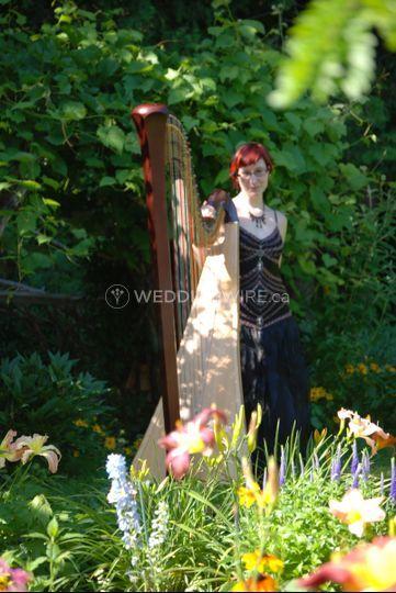 Liane James - Harpist