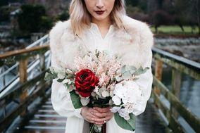 Elyse Anna Photography