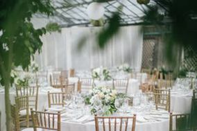 Showdesign - Event Rentals